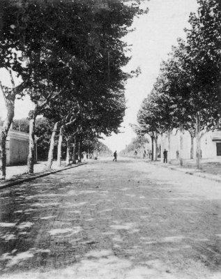 via Foscolo - Anno 1899