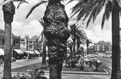 Passeggiata e viali a mare - Anno 1958