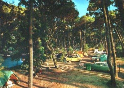 Camping in pineta - Anno 1973