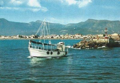 Molo - Anno 1984