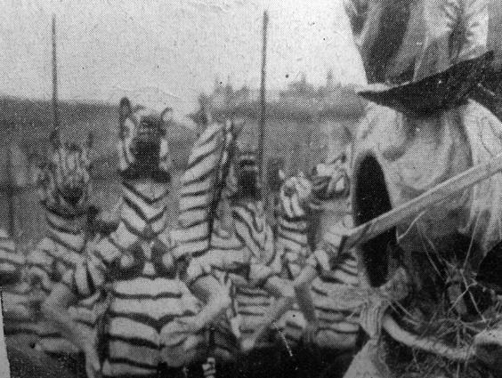 Le zebre alla conquista del primato di Renato Catarsini - Mascherate di Gruppo - Carnevale di Viareggio 1933