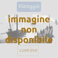 Argomenti convincenti di Danilo Cinquini - Maschere Isolate - Carnevale di Viareggio 1957